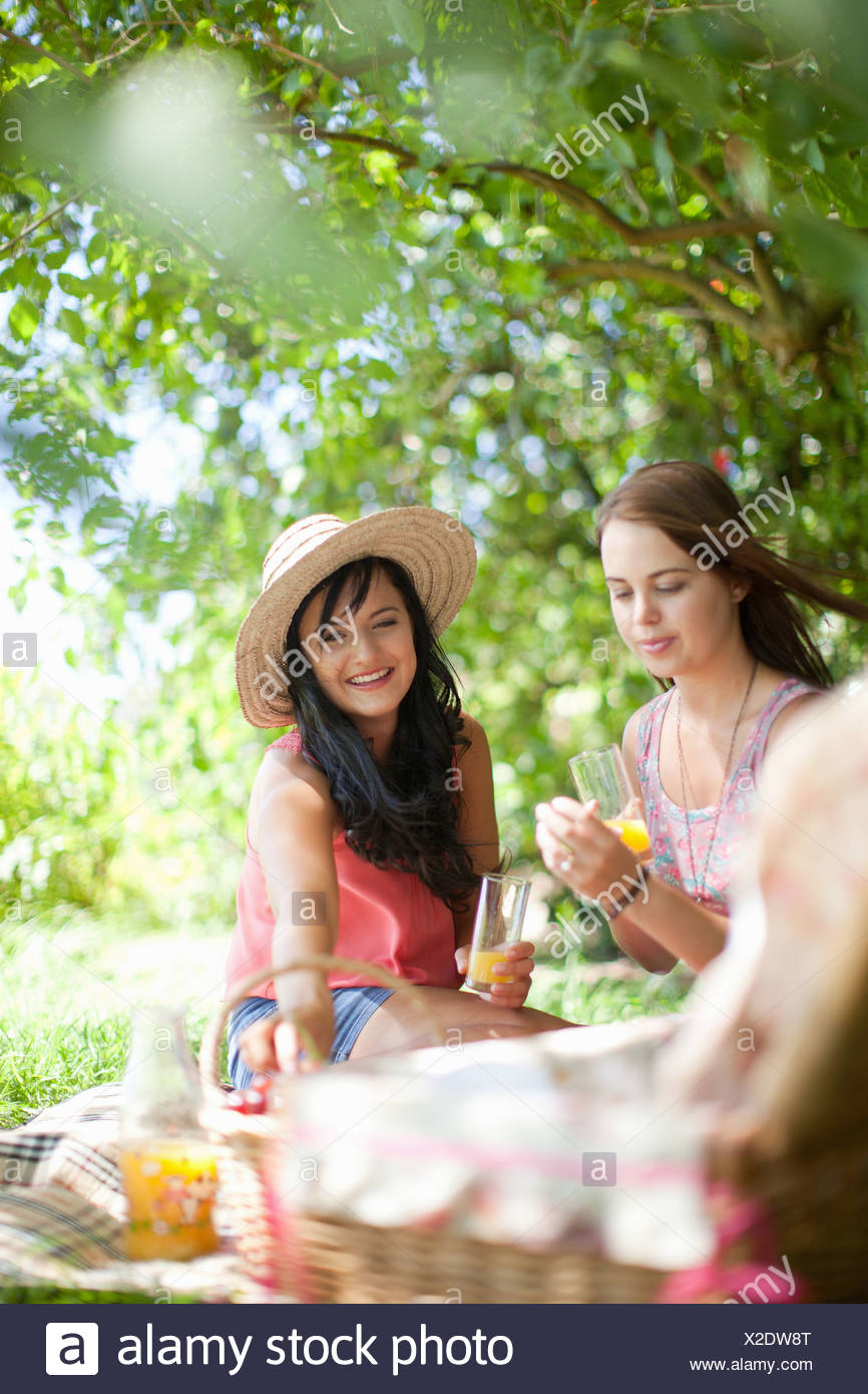 Women picnicking together in park - Stock Image