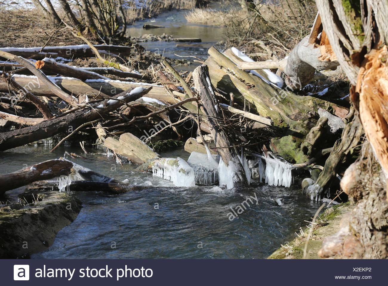 River Damm Stock Photo