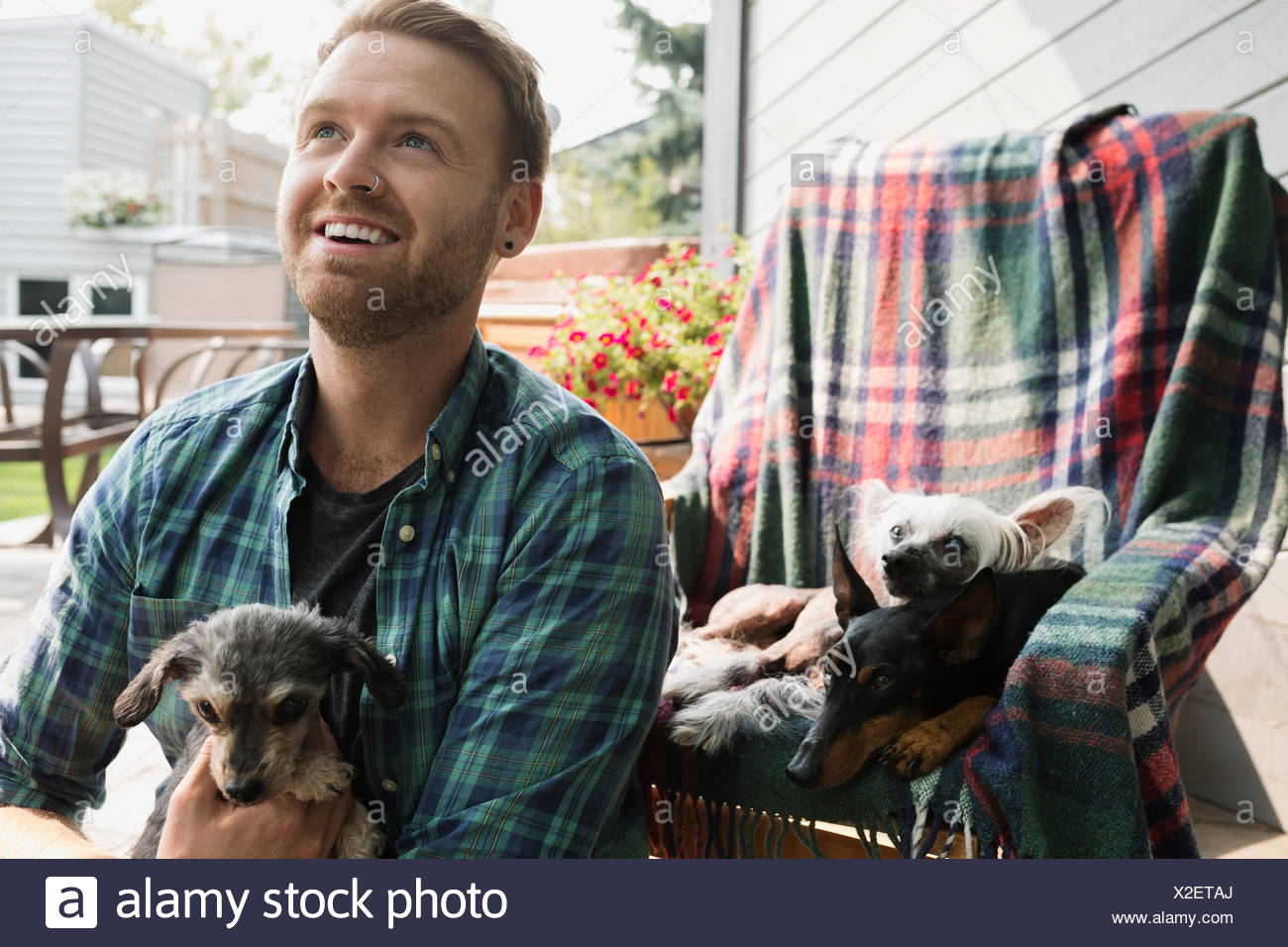 Smiling man with dogs on patio - Stock Image