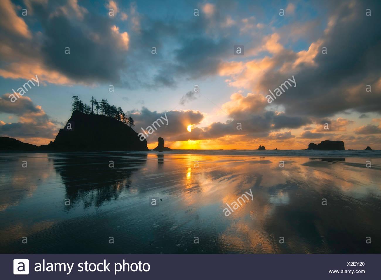 USA, Vereinigte Staaten, Amerika, Olympic, Nationalpark, Second beach, 2. Beach, Wasser, Strand, Ozean, Pazifischer Ozean, Nordw - Stock Image