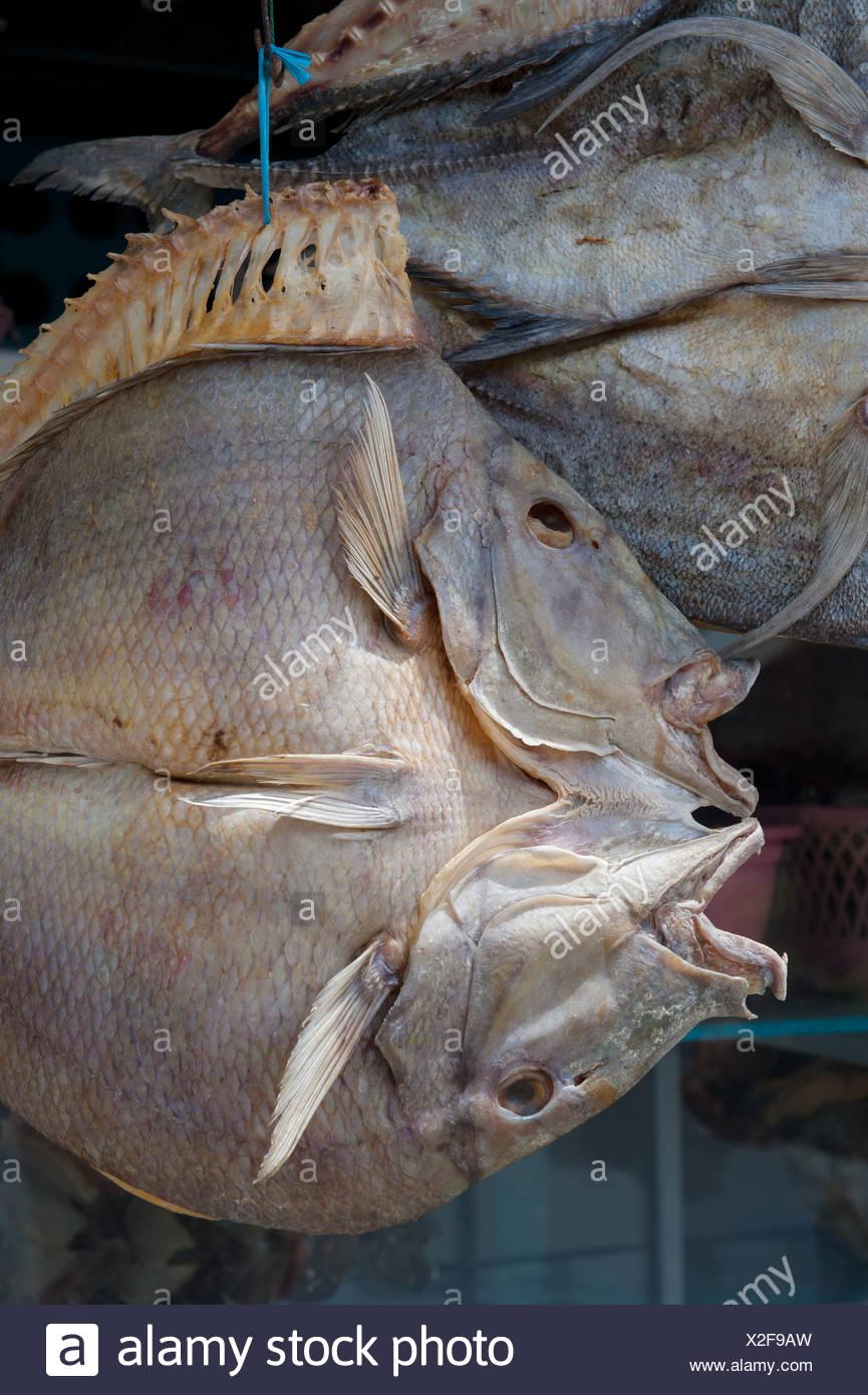 Dried fish, Sulawesi, Indonesia - Stock Image