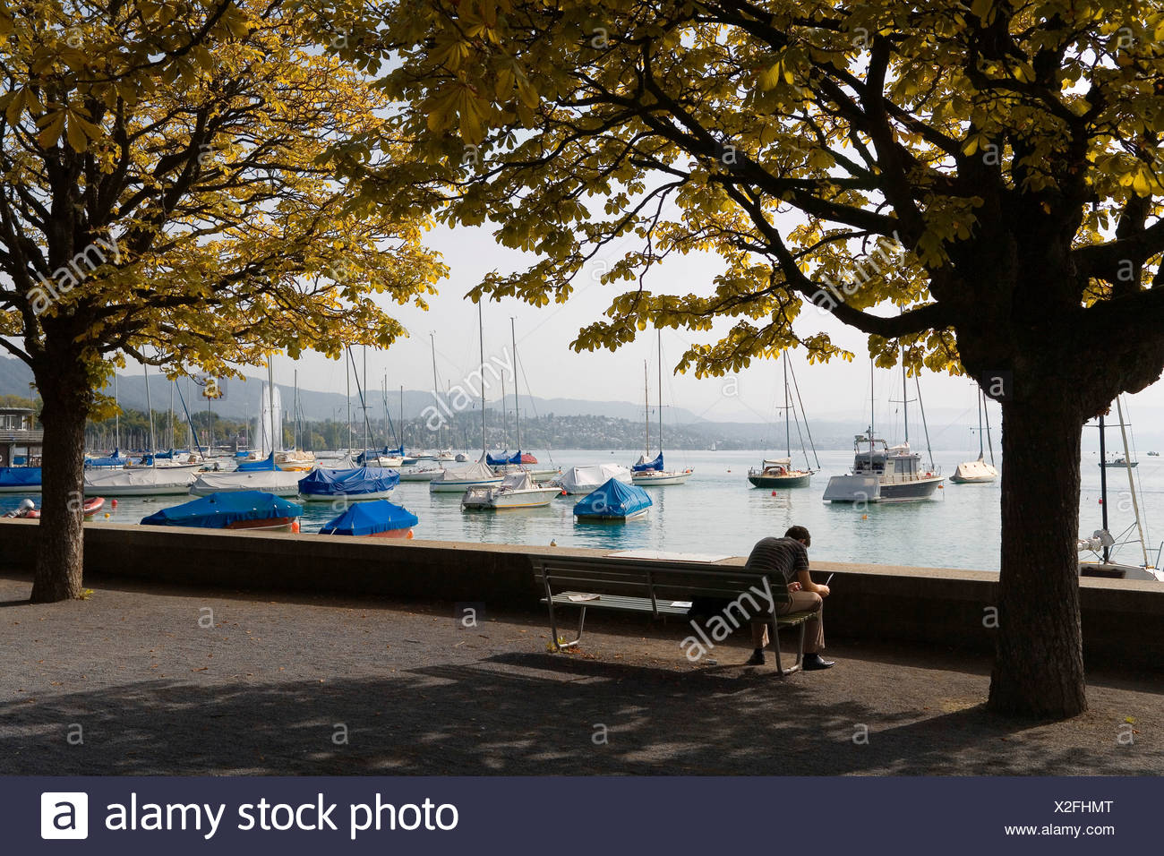 Autumnal mood on a boat harbour near Zurich, Switzerland, Europe - Stock Image