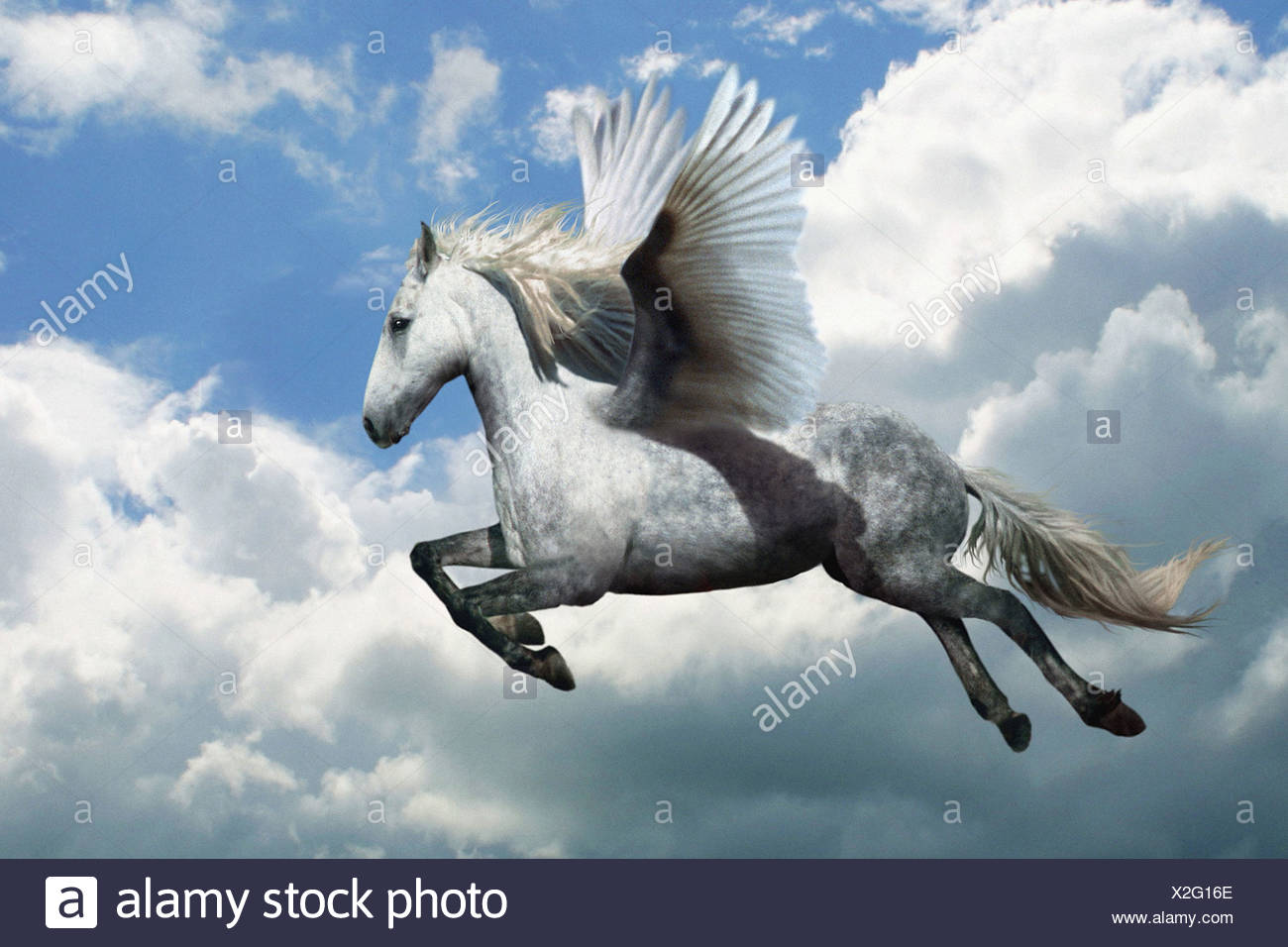 Mythical Creature Of Mythology Stock Photos & Mythical