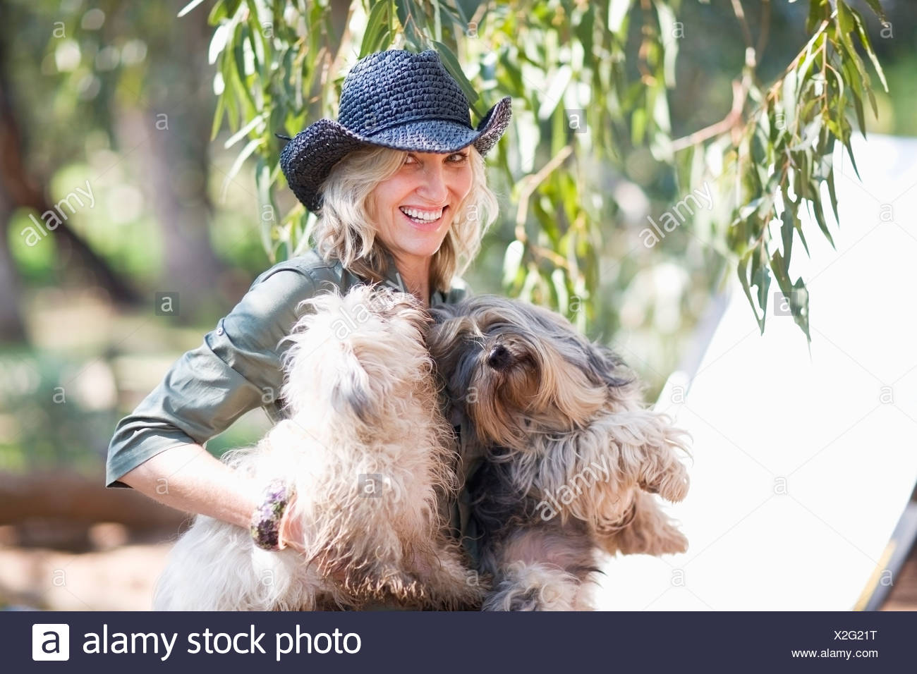 Woman carrying dogs outdoors - Stock Image