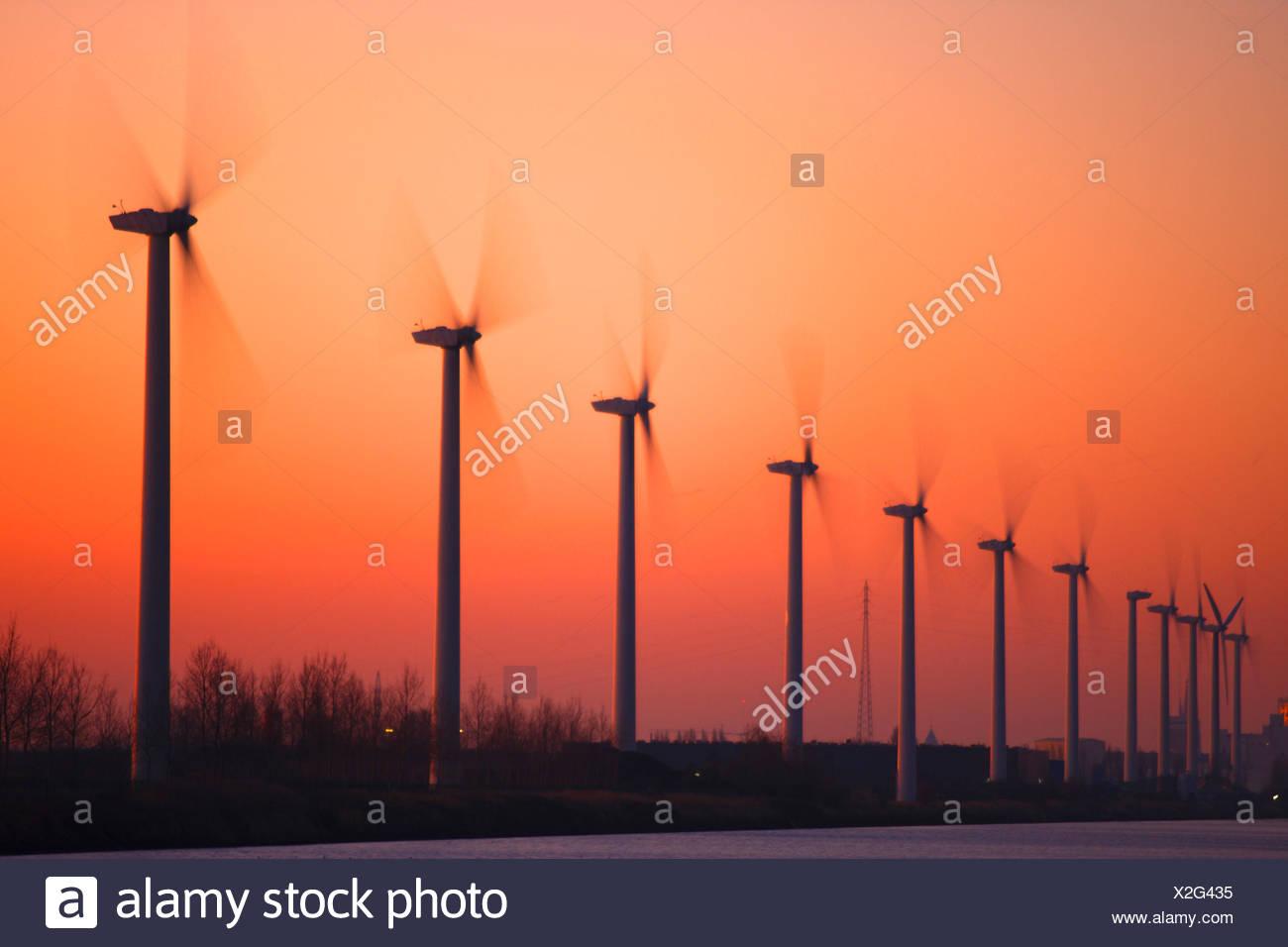 wind mills at sunset, Belgium - Stock Image