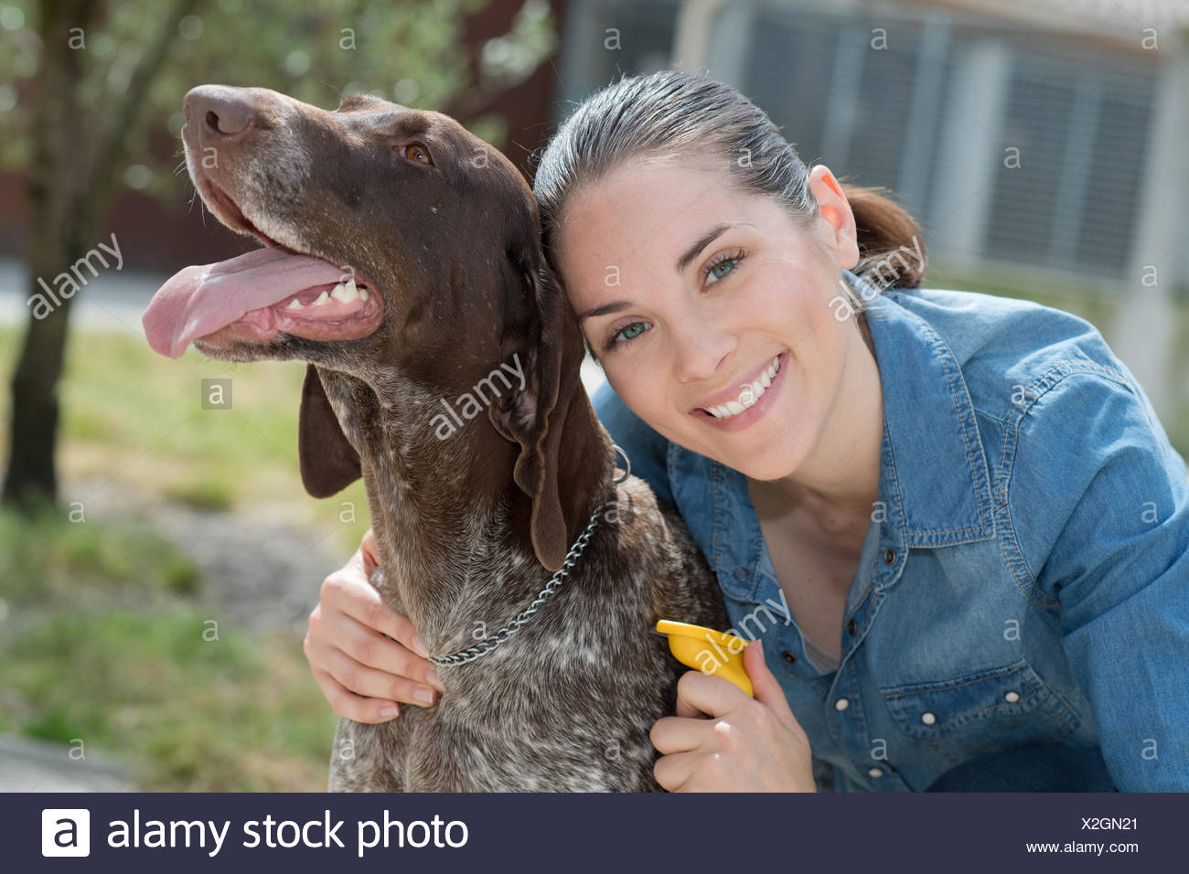 female vet stroking dog at animal shelter - Stock Image