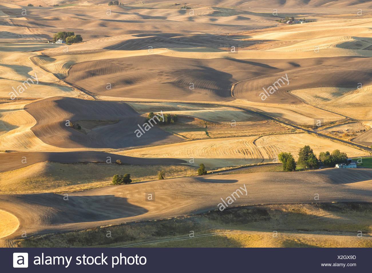 Rolling Palouse farm lands, from Steptoe Butte, Washington, USA - Stock Image