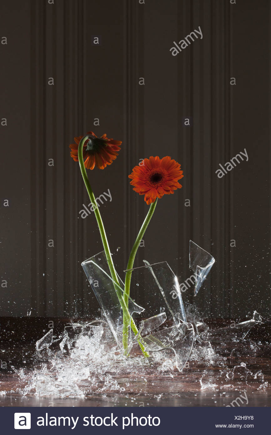 a vase shattering stock image