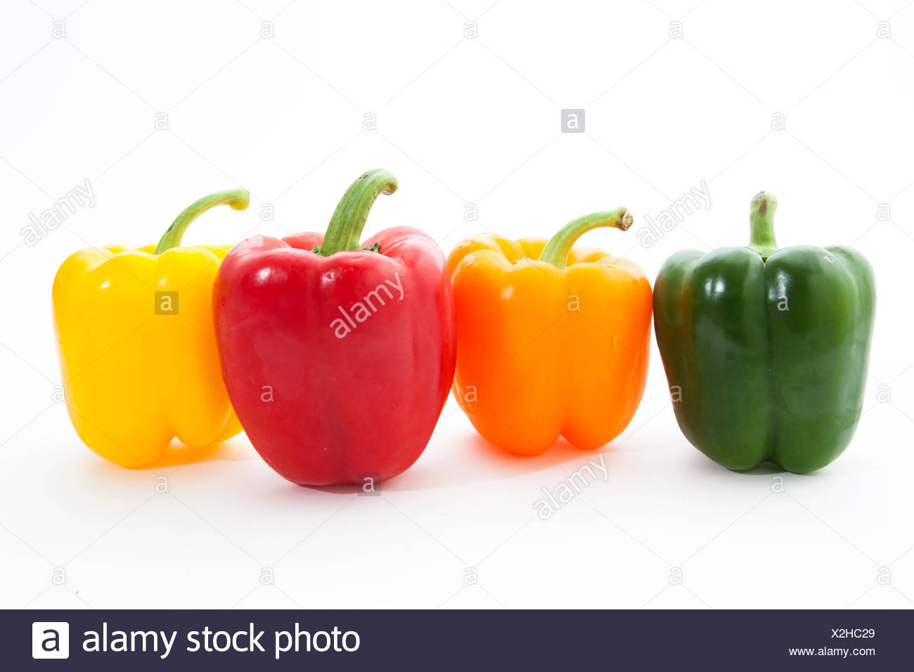 Multi-colored Bell Peppers in a row - Stock Image