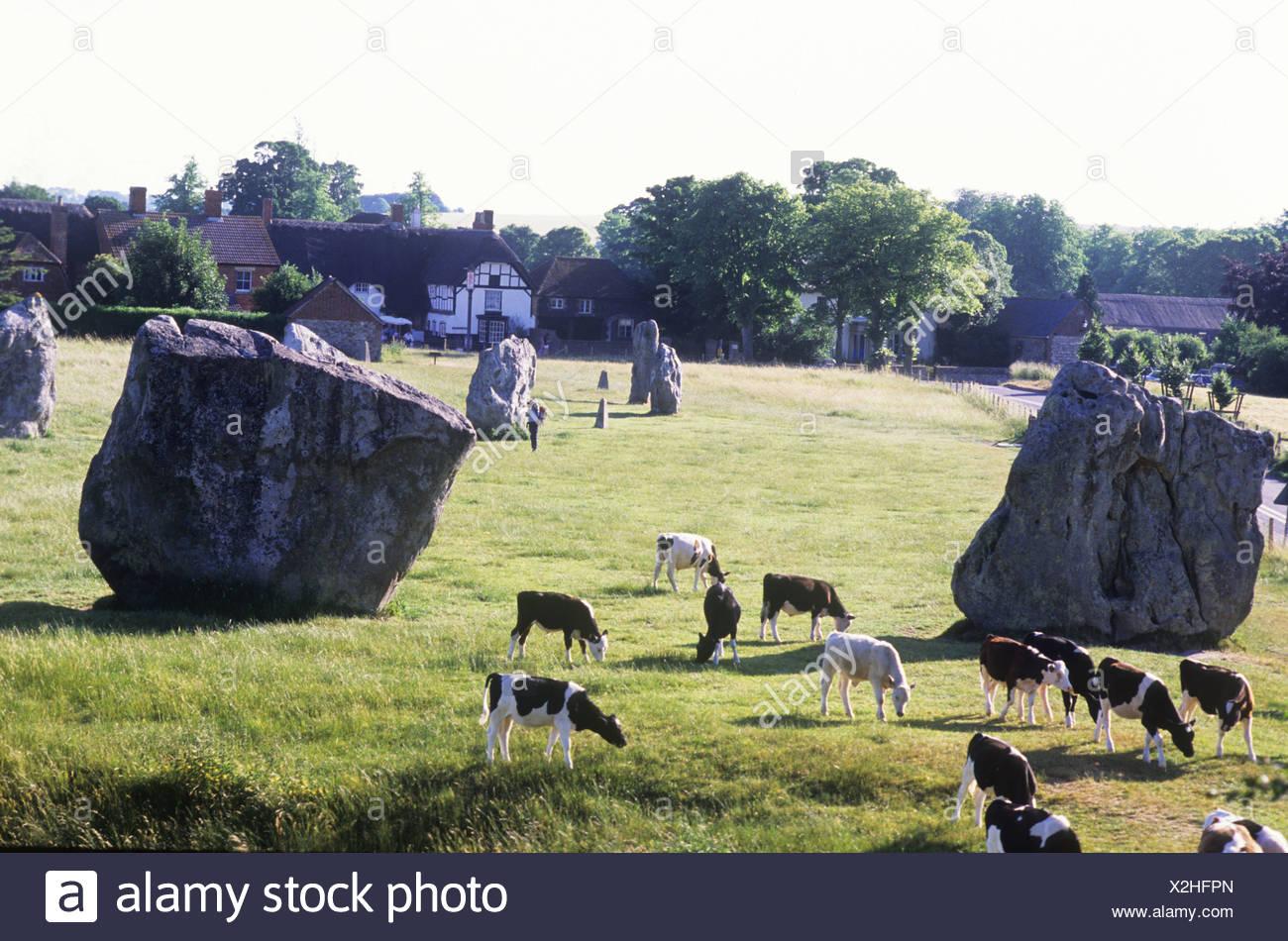 Avebury Wiltshire English prehistoric prehistory stone circle circles England UK sarsen stones religion religious site - Stock Image