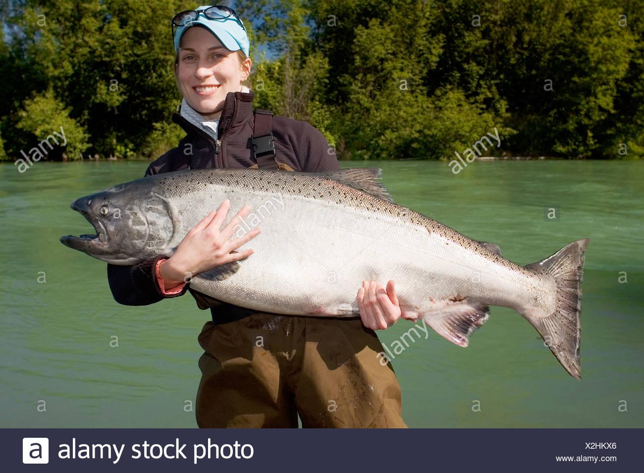Alaska  Kenai Peninsula  Kenai River  King Salmon fisher