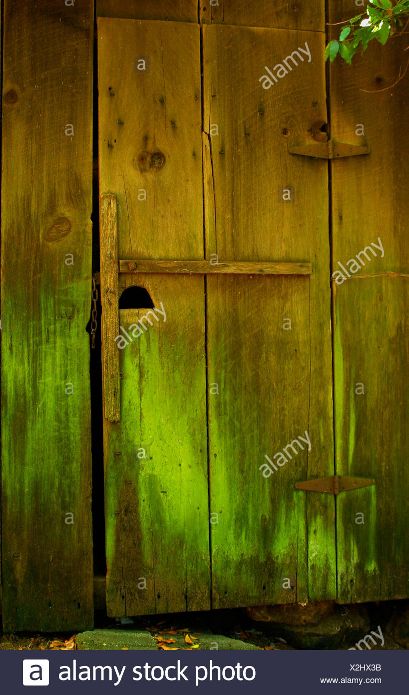 Old redwood barn door with bright green water stains, California. - Stock Image