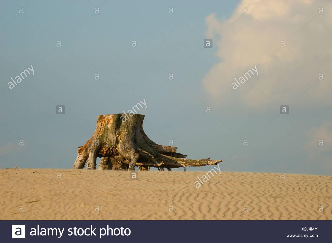 Inland sand dunes - Stock Image