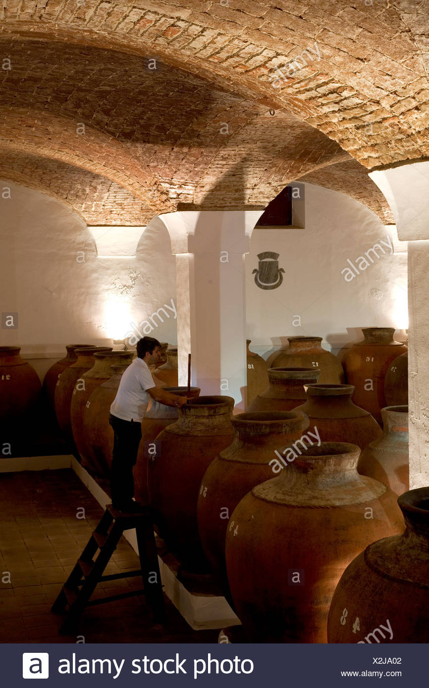 Bodega Jose de Sousa, belonging to the wine empire of Jose Maria Fonseca, Reguengos de Monsaraz, Alentejo, Portugal, Europe - Stock Image