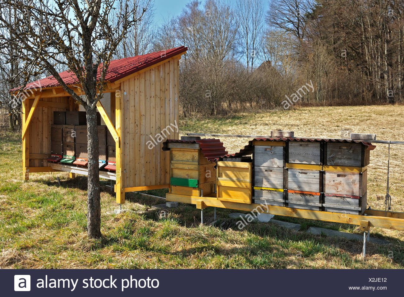 Bee hives, near Munich, Bavaria, Germany, Europe - Stock Image