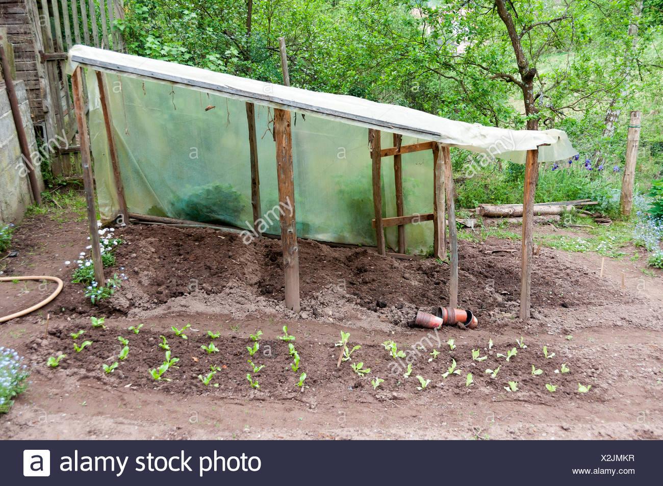 Home Made Garden Greenhouse Stock Photo Alamy