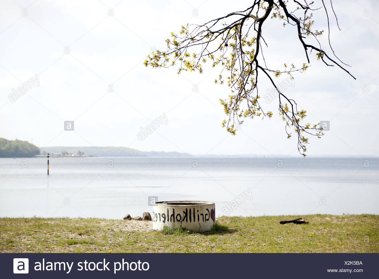 The Baltic Sea, barbecue area, nobody, outside, spring, sea, waters, tree, Förde, grill coal, grill coal leftovers, disposal, Stock Photo