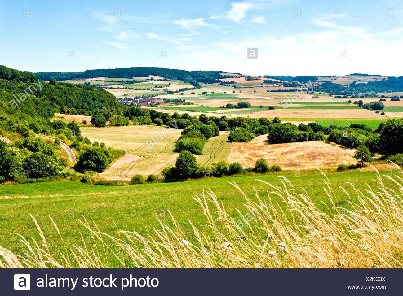 Highlands, Weserbergland, Lower Saxony - Stock Image