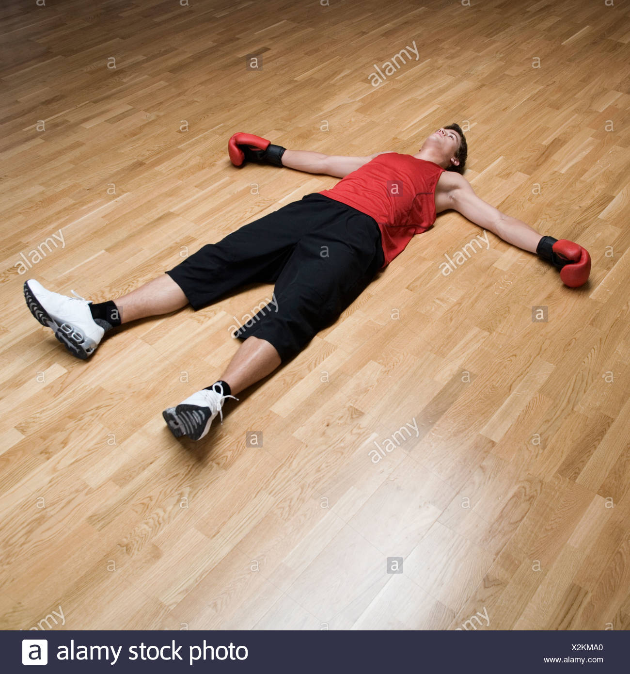 A Boxer Laying On The Floor Stock Photo: 277028248