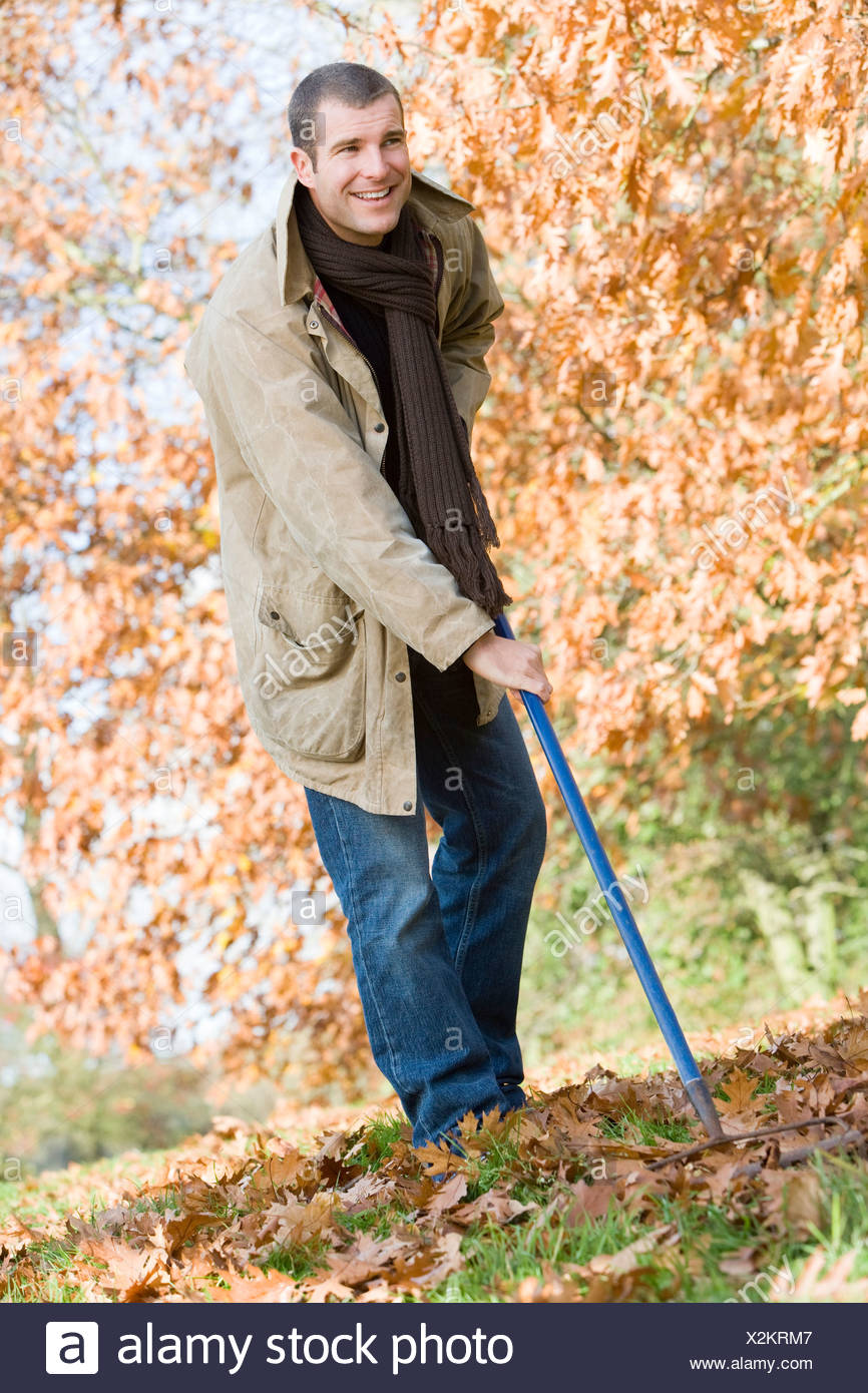 Man outdoors raking leaves and smiling (selective focus) - Stock Image
