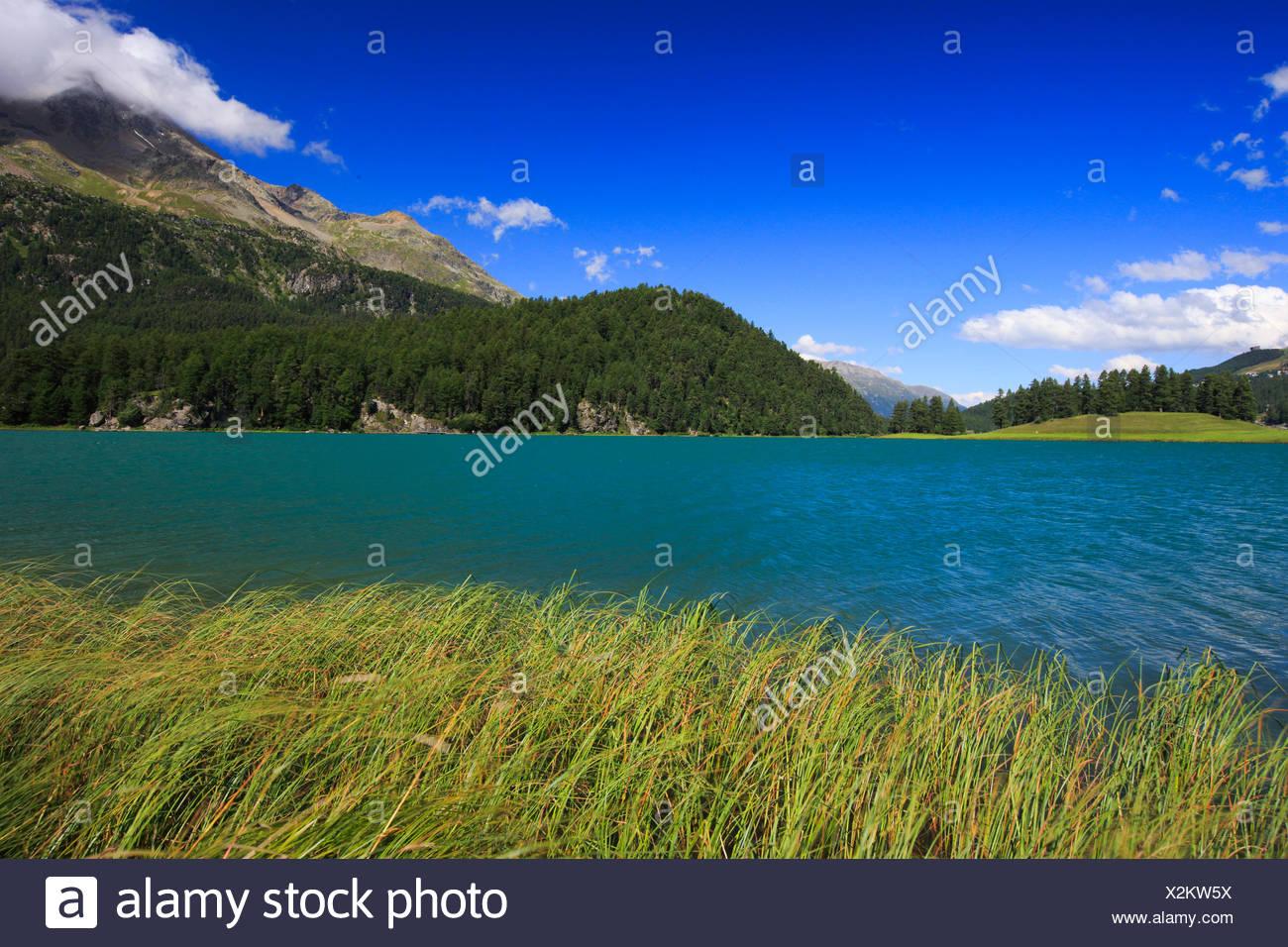 Lej da ChampfÞr, Lej Suot, Piz Surlej, Switzerland, Grisons, Engadine Stock Photo