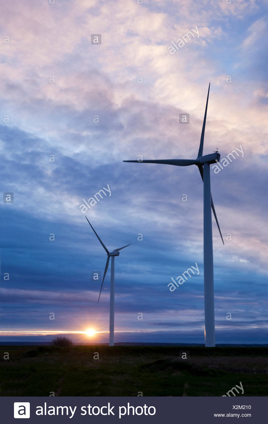 Two wind turbines silhouetted against the setting sun. The turbines are among 15 at the Amherst Wind Farm located in Amherst, Stock Photo