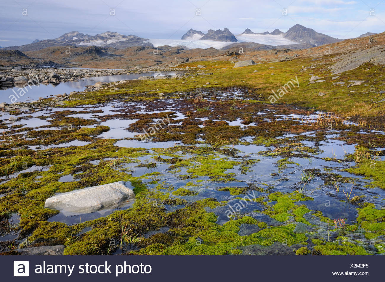High mountain landscape in Jotunheimen National Park, Norway, Europe - Stock Image