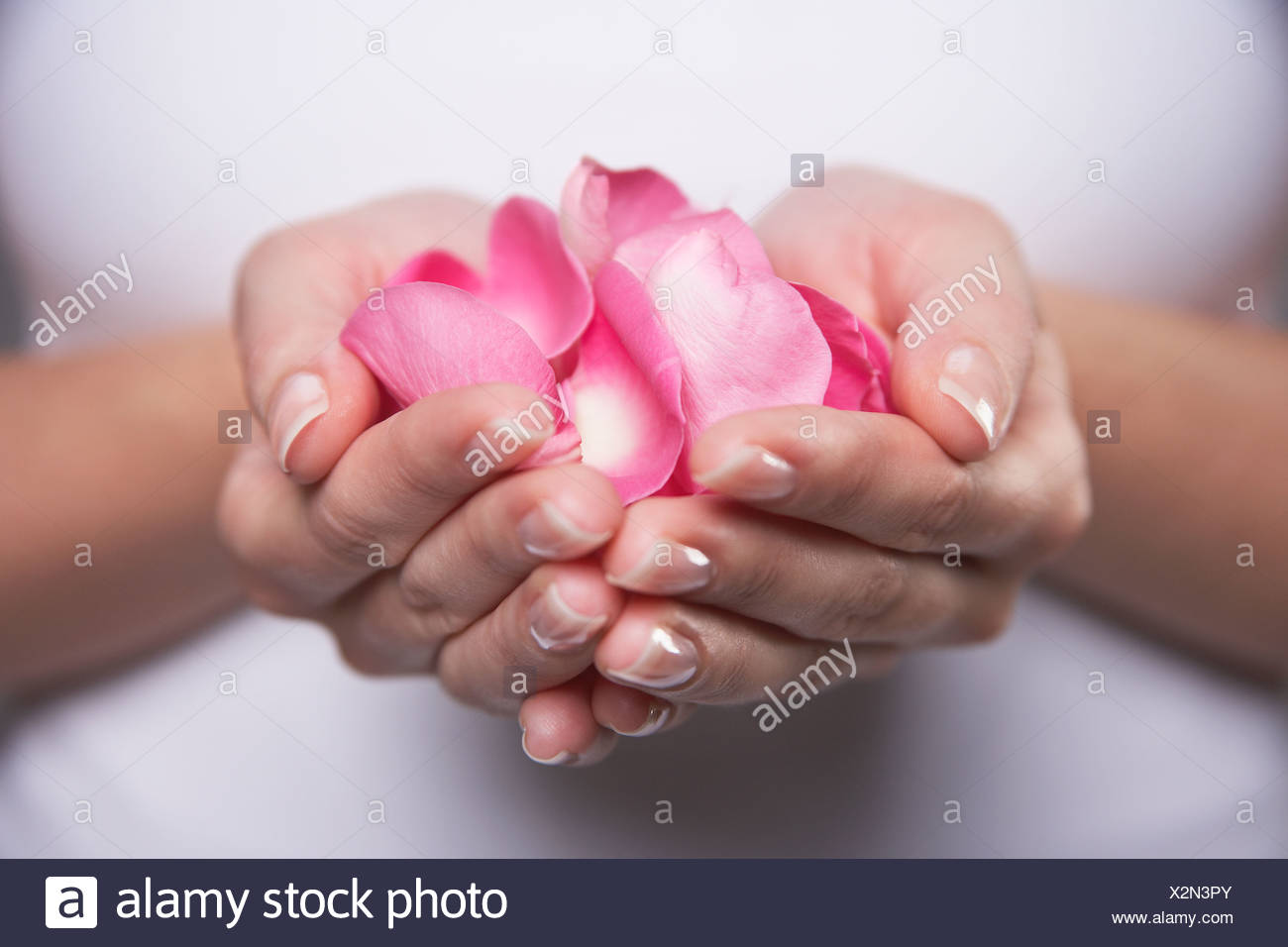 Woman cupping hands full of petals, mid section, close-up Stock Photo