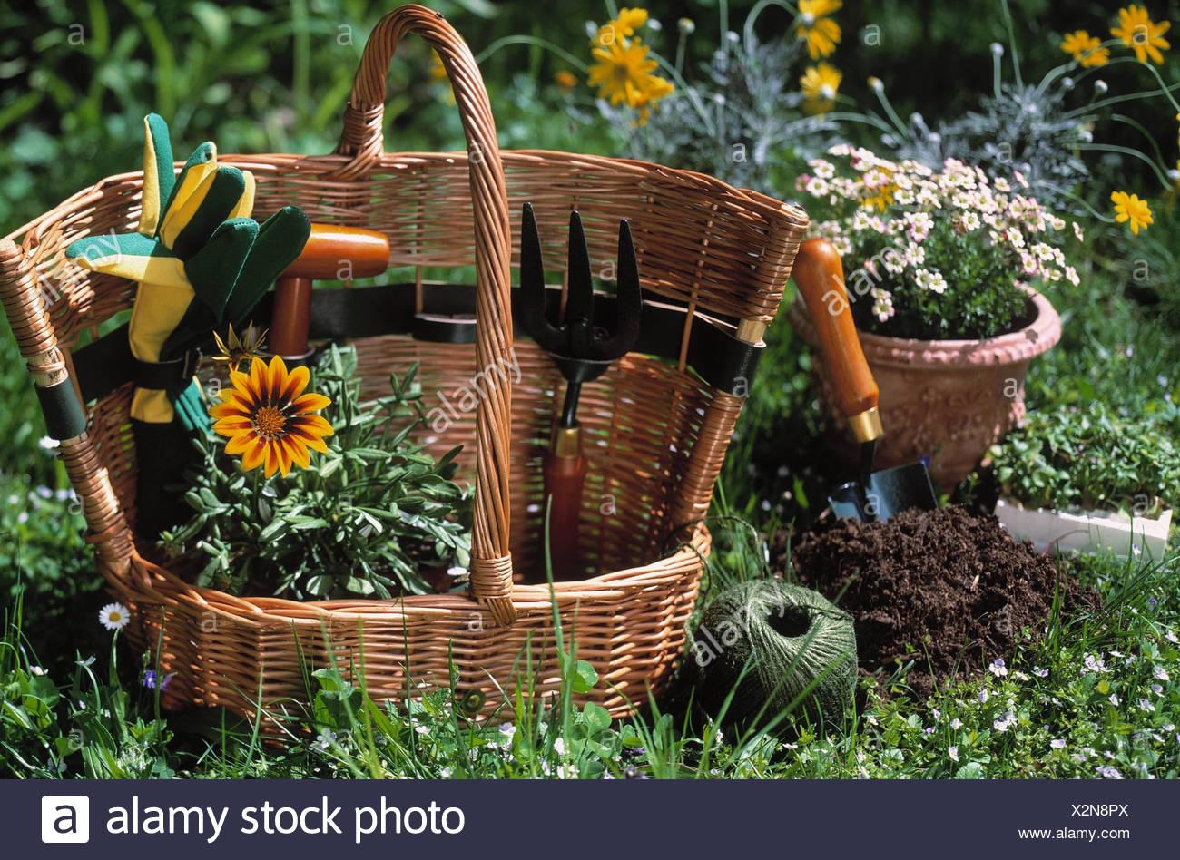 Garden, Detail, Flower Meadow, Wicker Basket, Garden Implements, Gardening  Tools, Garden Tennis Racket, Flower Branch, Dibble, Flowers, Working  Gloves, ...