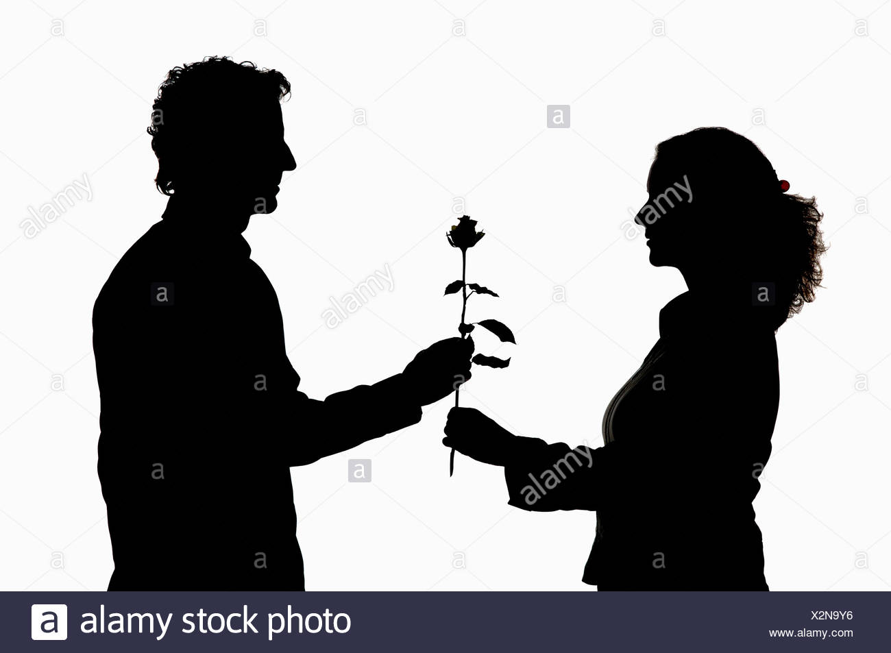 Man giving rose to woman, silhouette - Stock Image