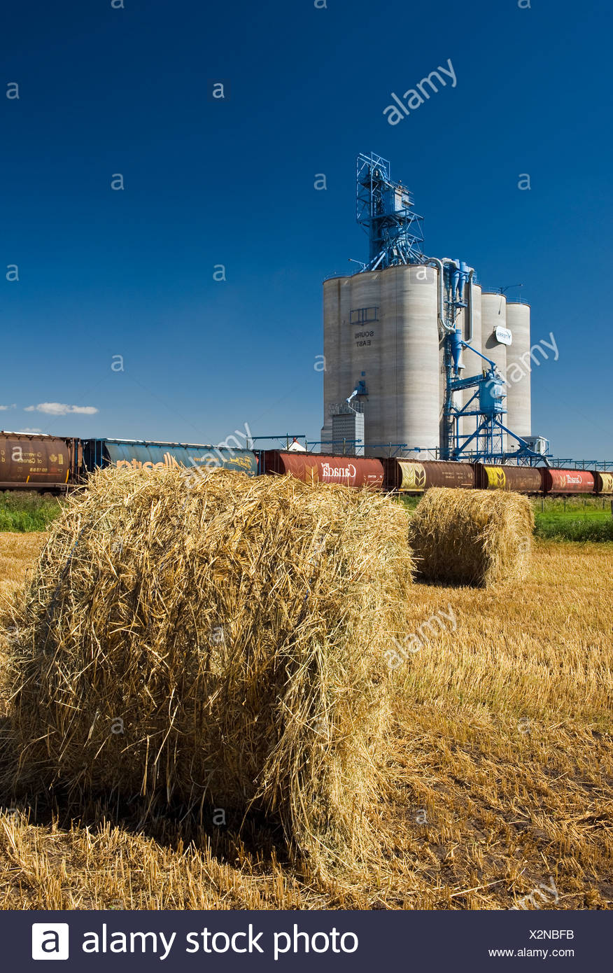 Inland grain terminal and oat rolls near Souris, Manitoba, Canada - Stock Image