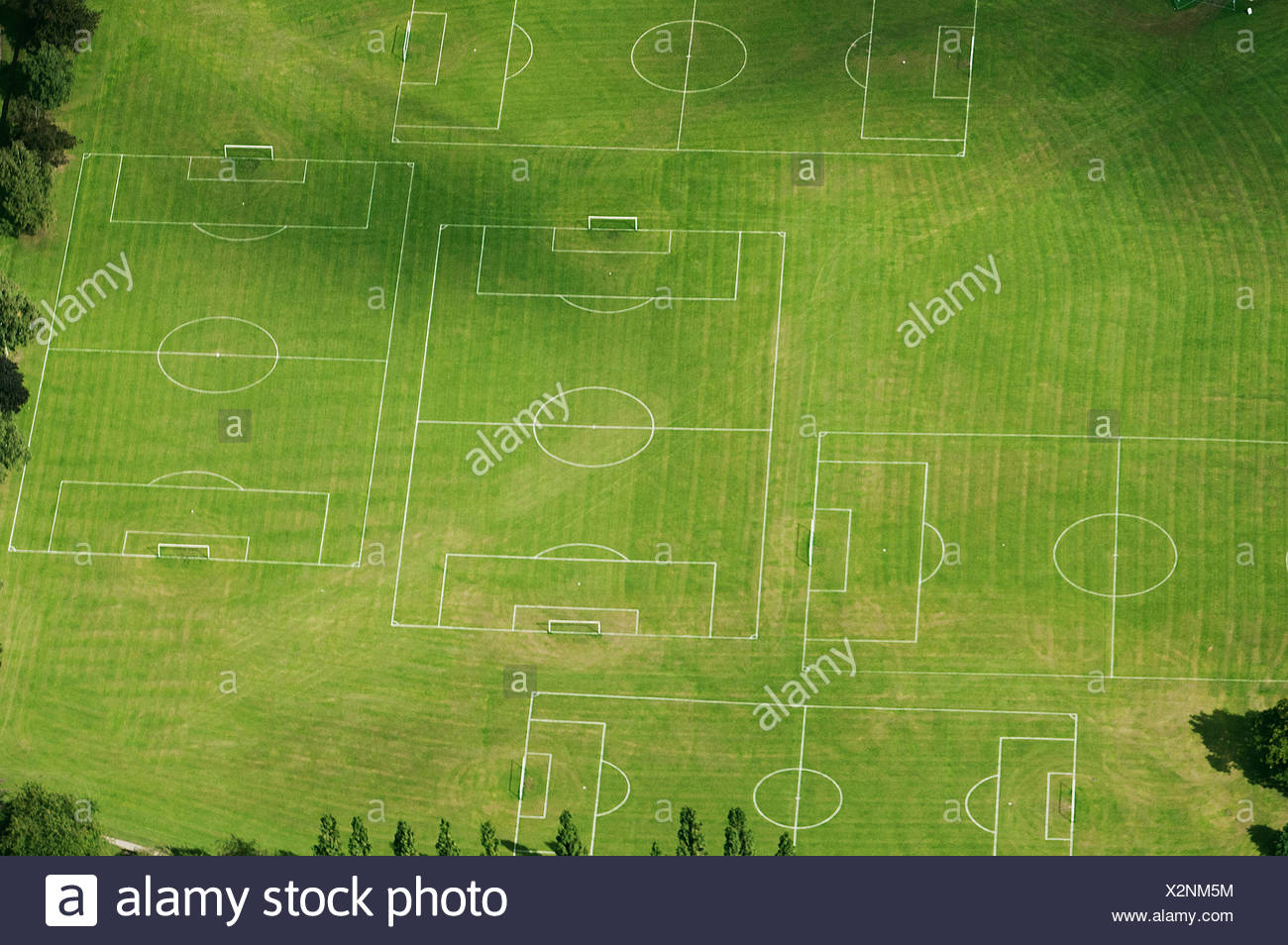 grass field aerial. Aerial View Of Soccer Pitches In Field - Stock Image Grass R