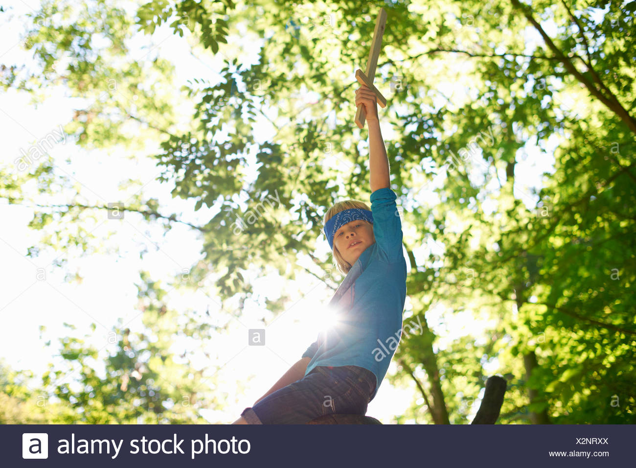 One young boy with toy sword, sitting on tree branch - Stock Image