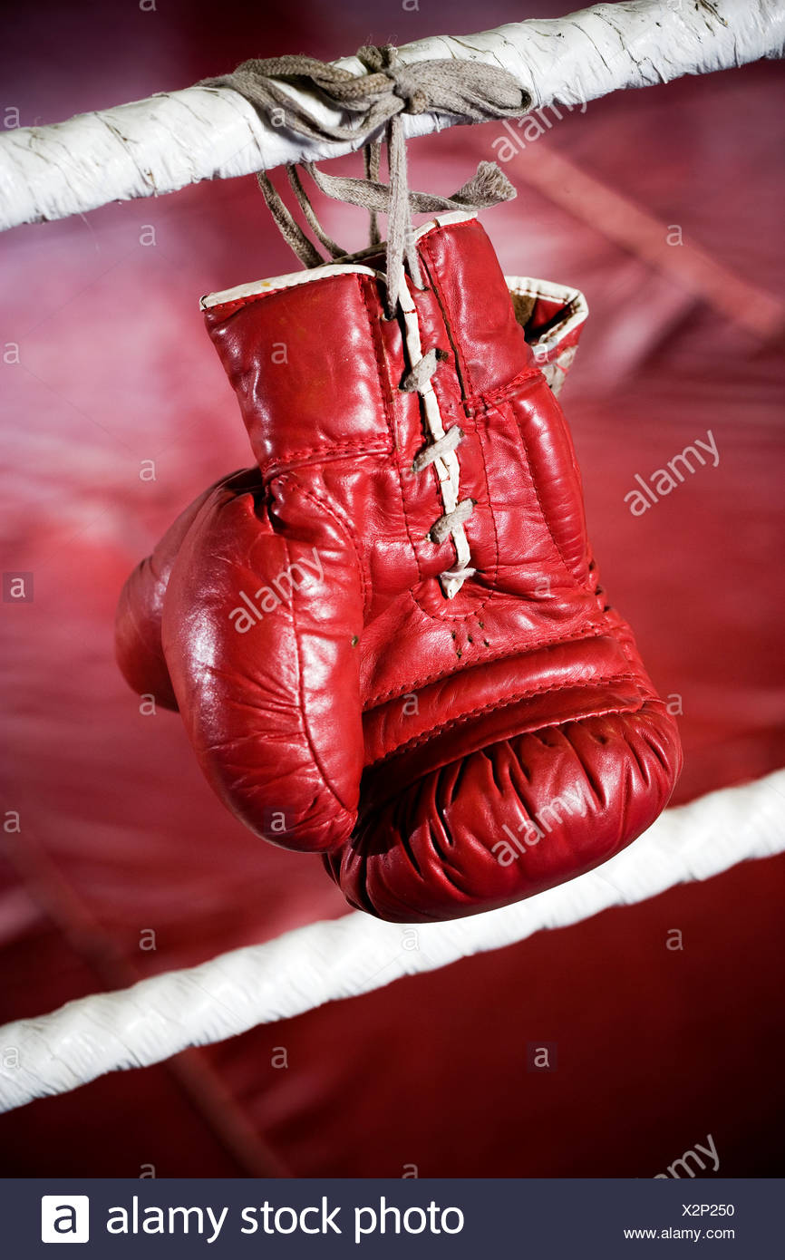 Close up of boxing gloves on the ropes of a boxing ring. - Stock Image