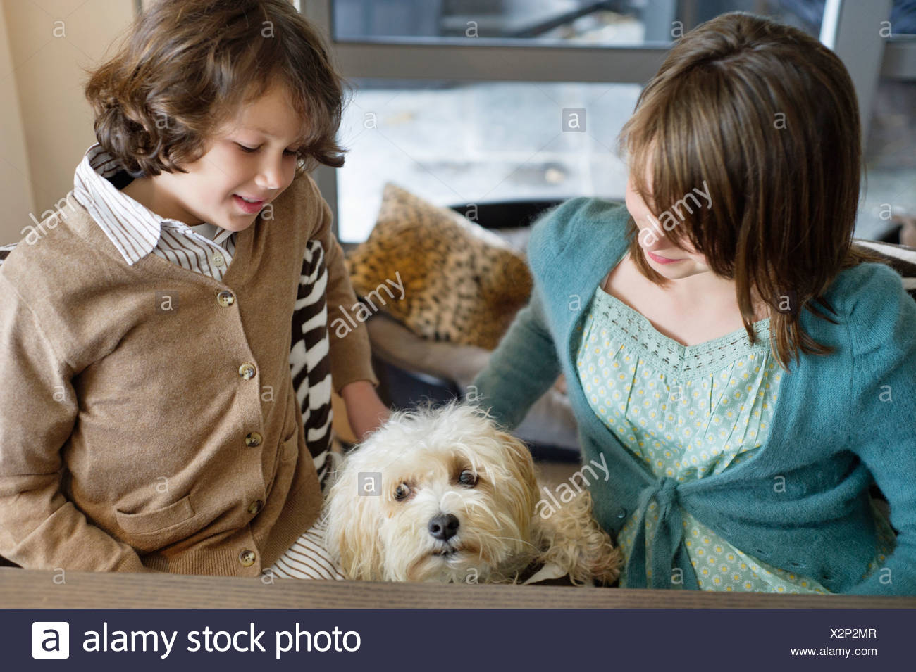 Boy and his sister playing with a dog Stock Photo