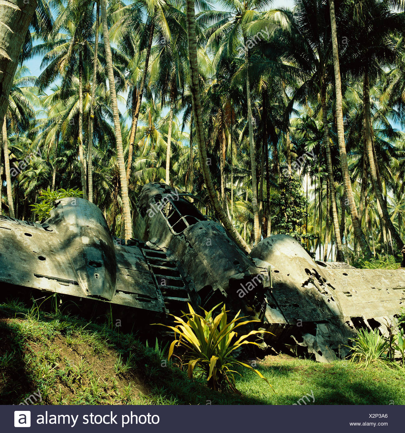 Airplane Wreckage New Guinea - Stock Image