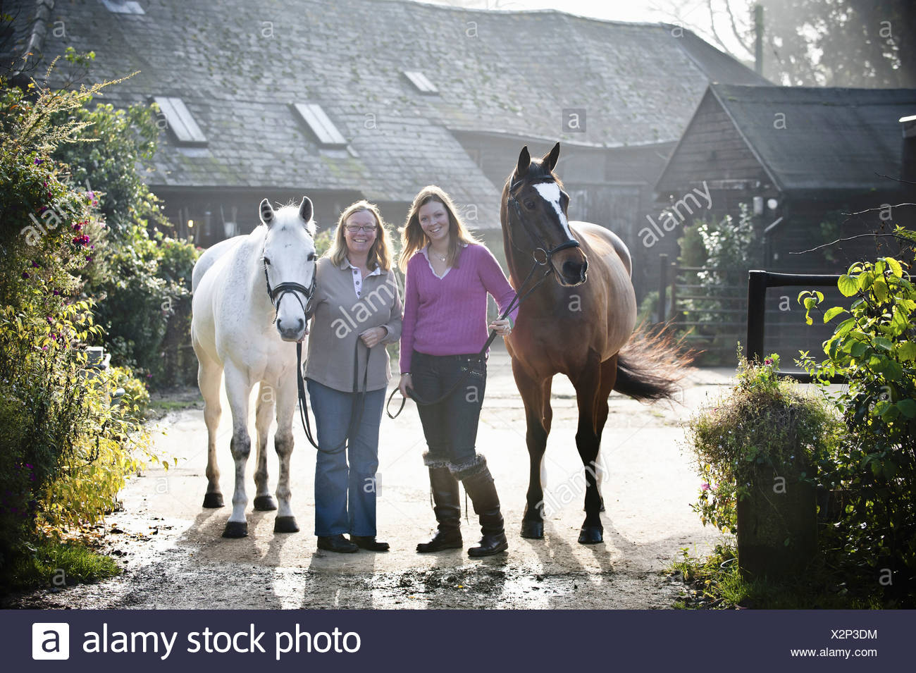 Two women standing outside a stable with two horses England - Stock Image