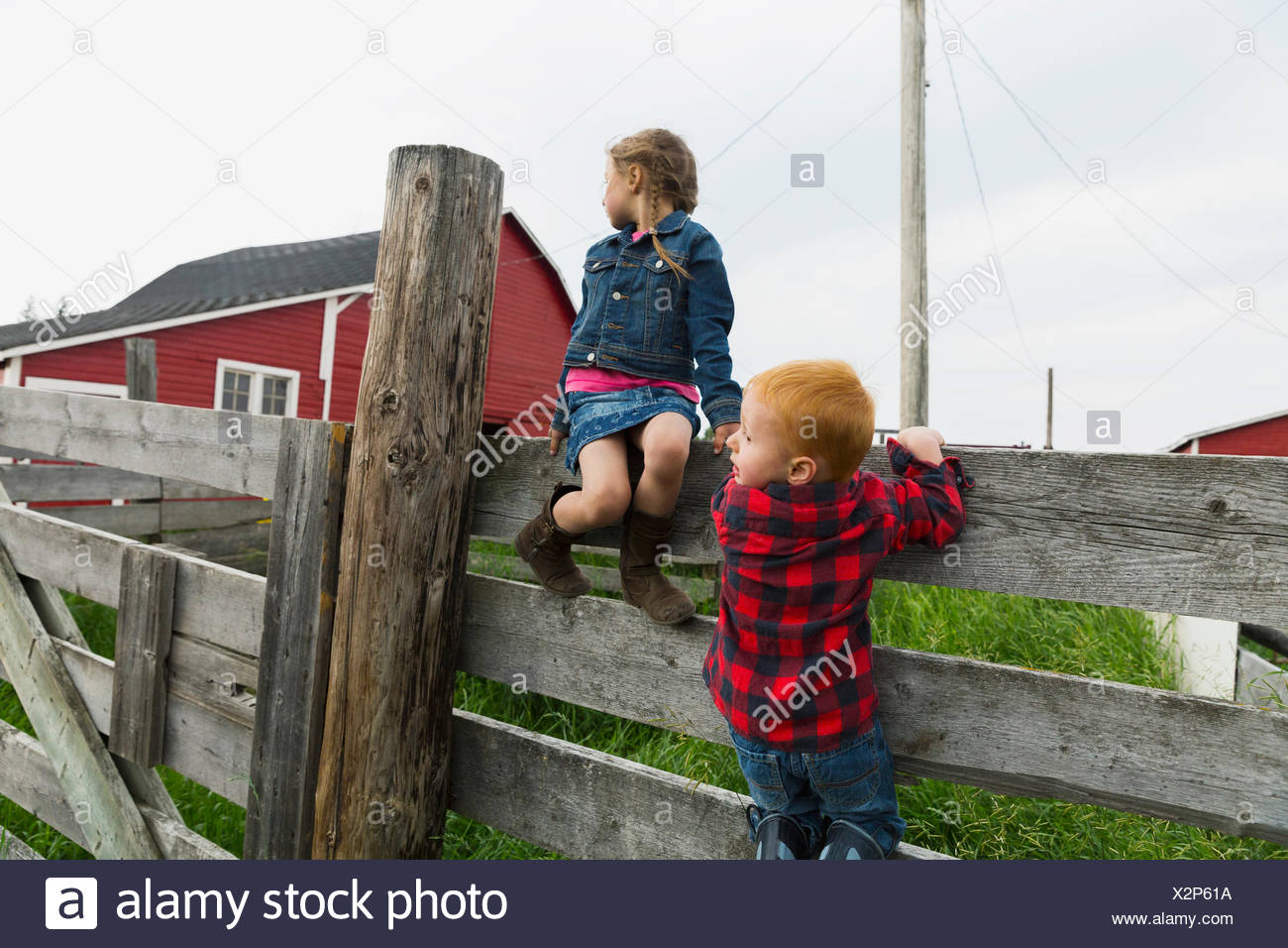 Brother and sister on fence in rural pasture - Stock Image