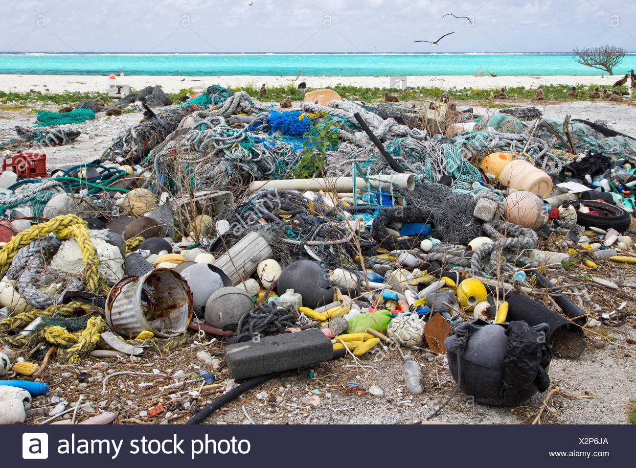 Plastic garbage collected research plot to assess plastic pollution Eastern Island Midway Atoll National Wildlife Refuge - Stock Image