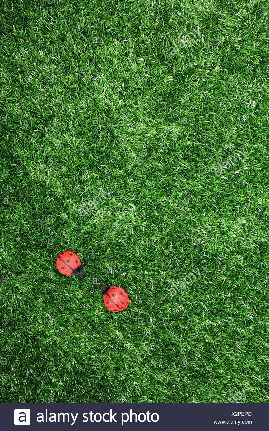 Toy ladybirds on fake grass - Stock Image