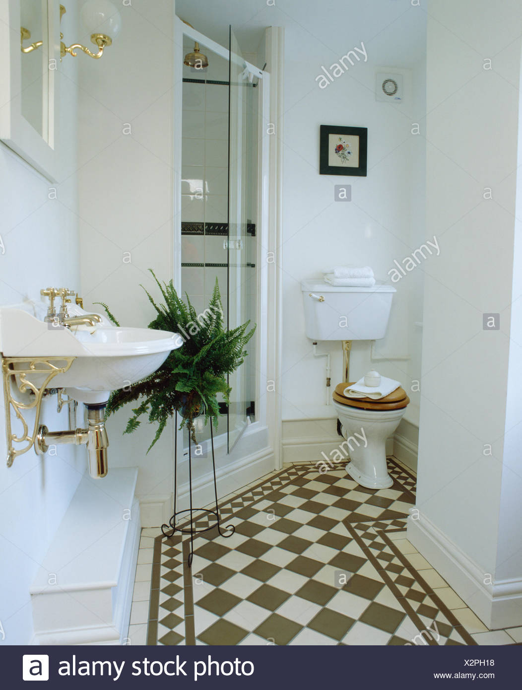 Black+white chequerboard flooring in white bathroom with Boston fern on stand beside glass shower doors - Stock Image