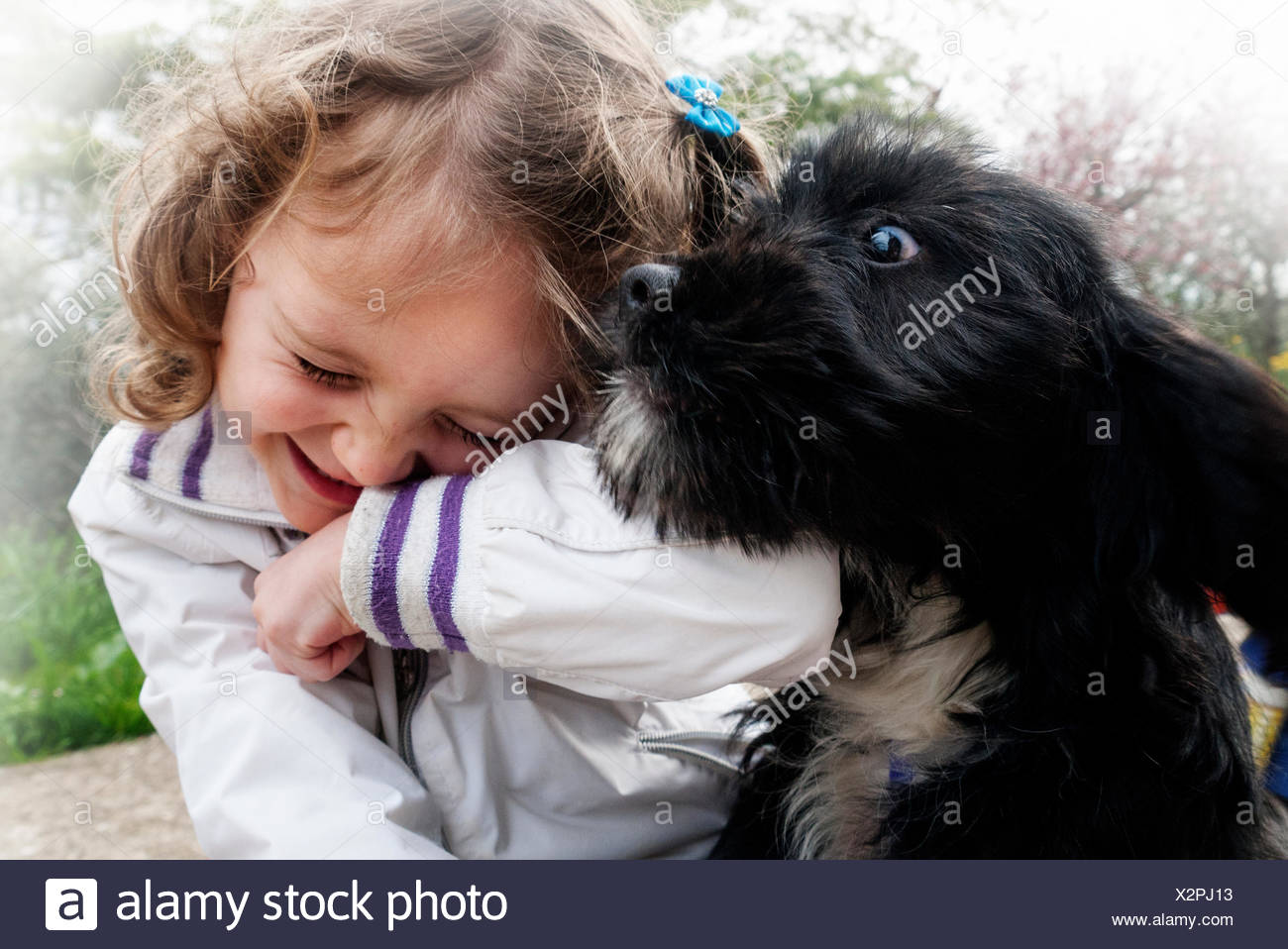 Italy, Little girl (4-5) playing with puppy - Stock Image