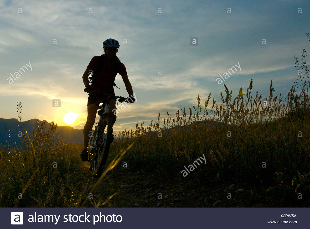 A female mountain biking at Marshal Mesa, Colorado (back lite). - Stock Image