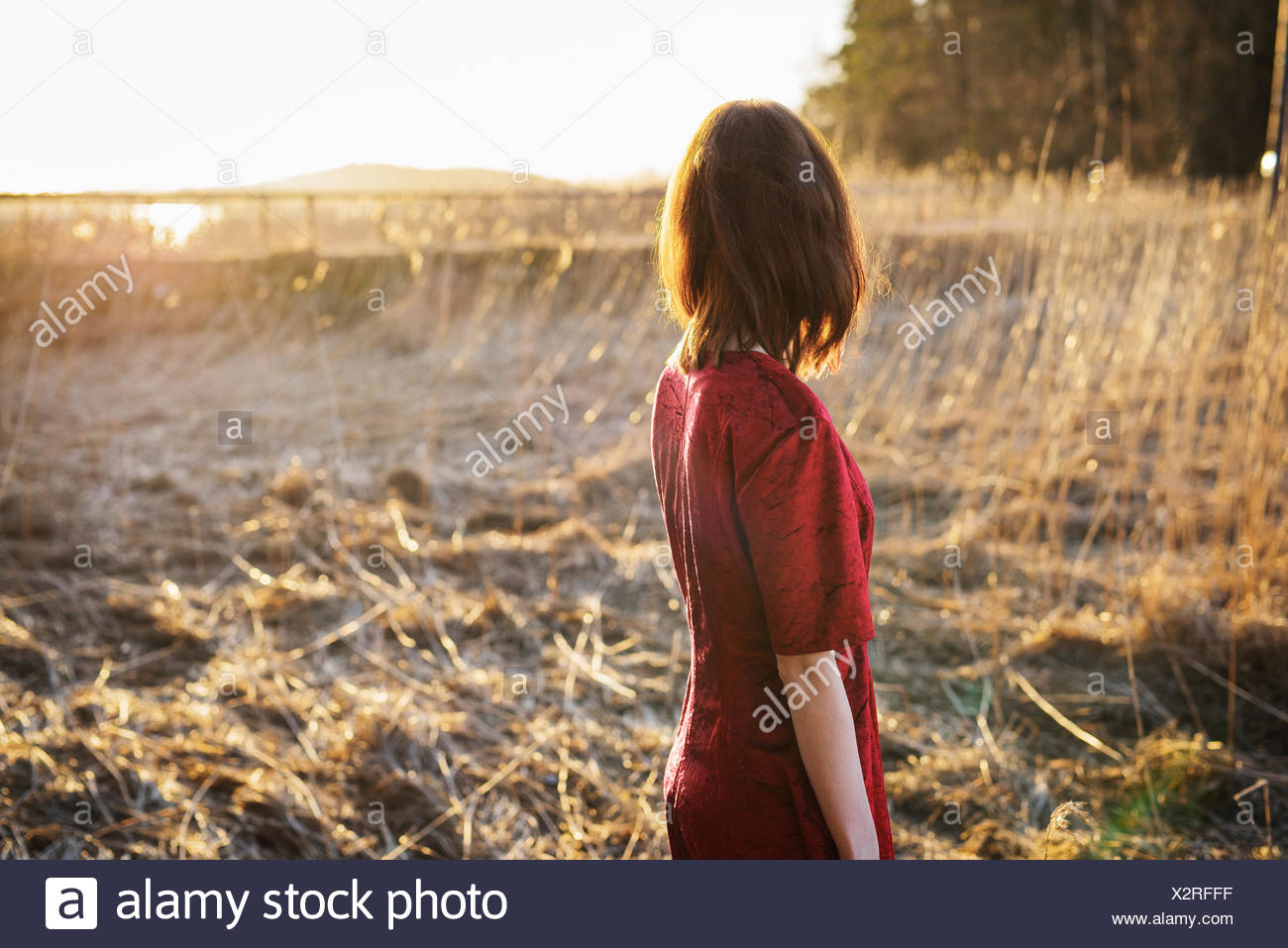 Finland, Varsinais-Suomi, Young woman standing in field - Stock Image