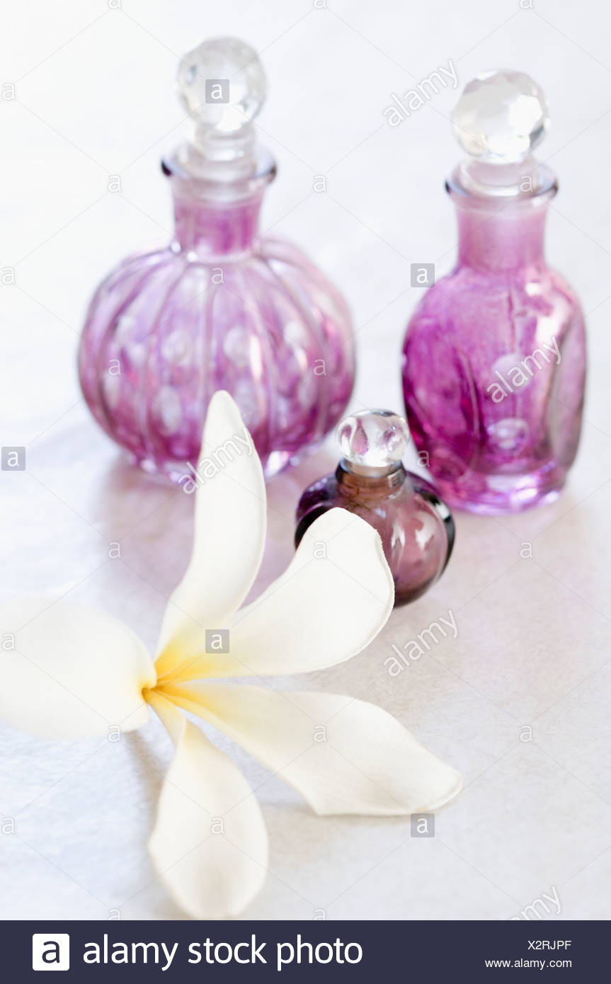 White Flower Liniment Image Collections Fresh Lotus Flowers