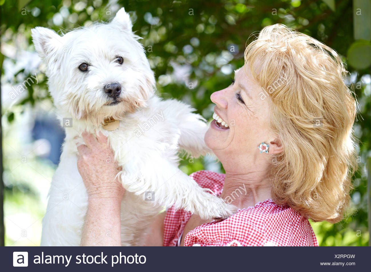Woman with pet dog Stock Photo