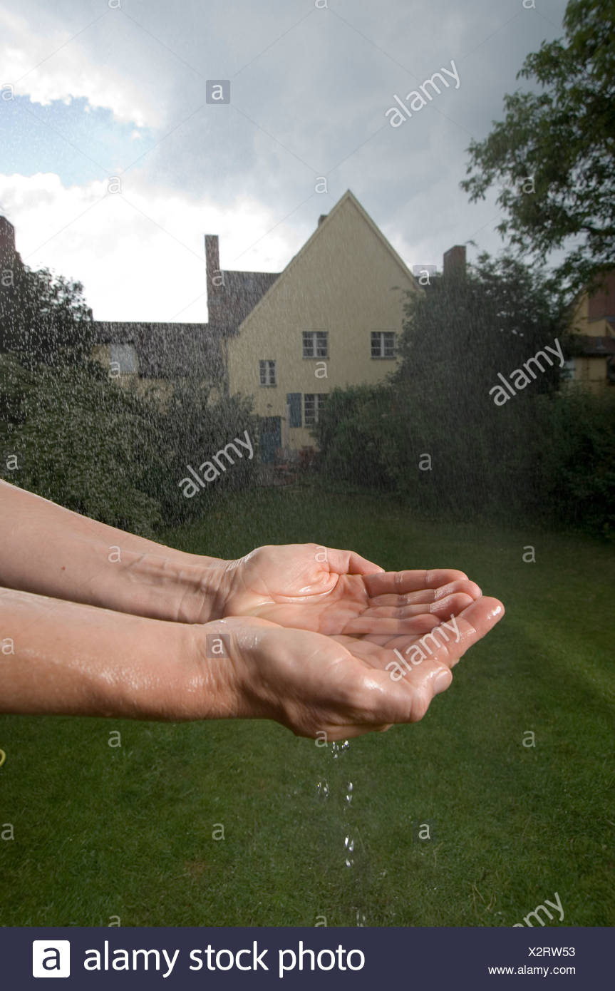 Rainwater - Stock Image