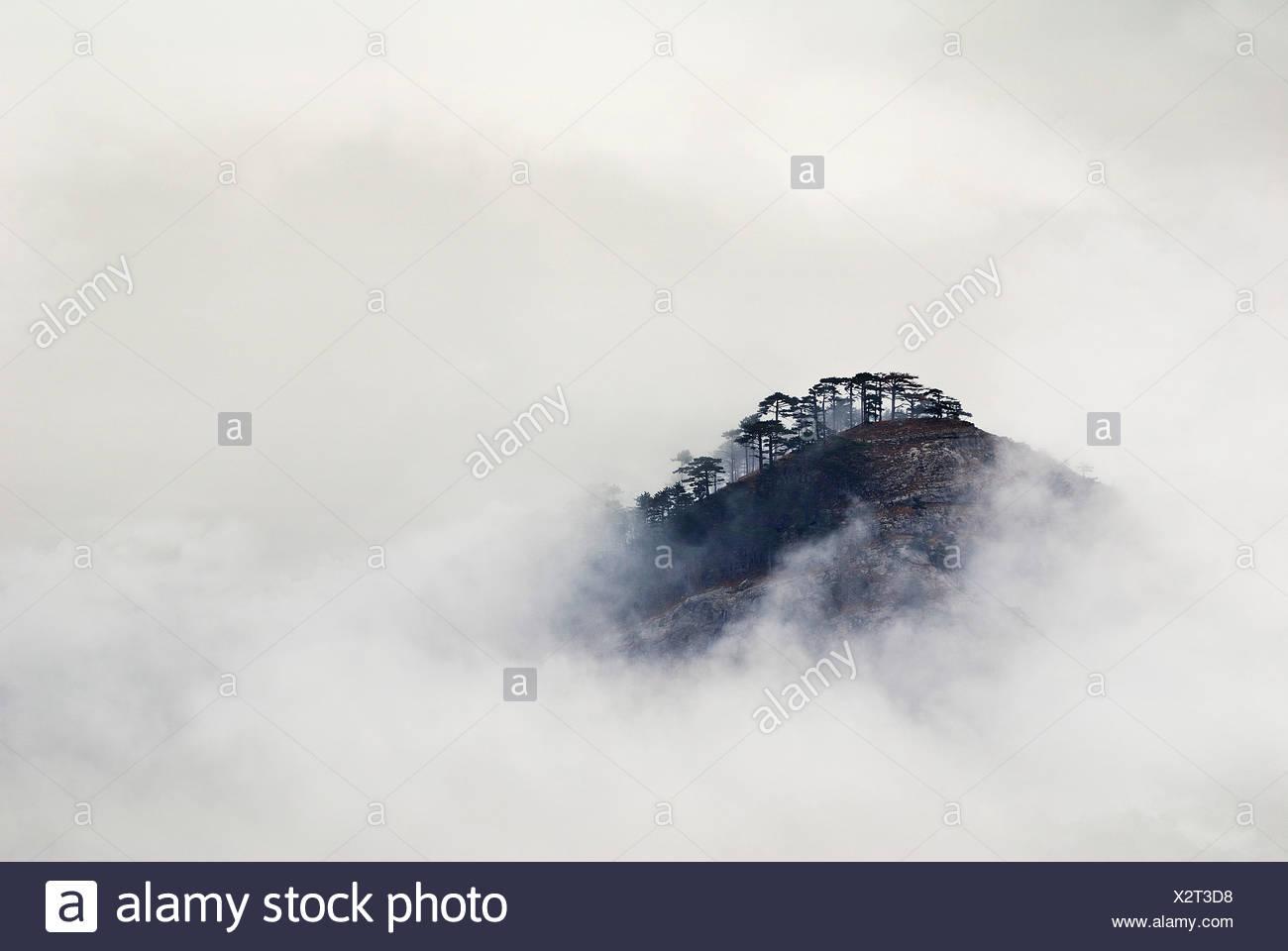ai-petri mountain on crimea covered in fog - Stock Image