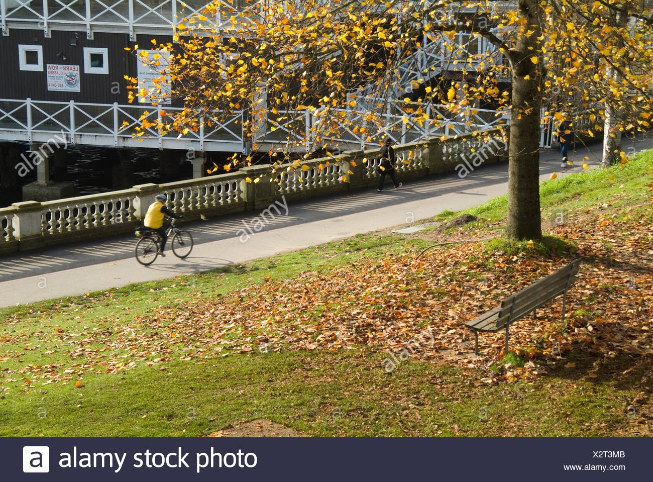 a bicyclist uses the seawall path in Stanley Park, next to the rowing club, Vancouver, BC, Canada - Stock Image