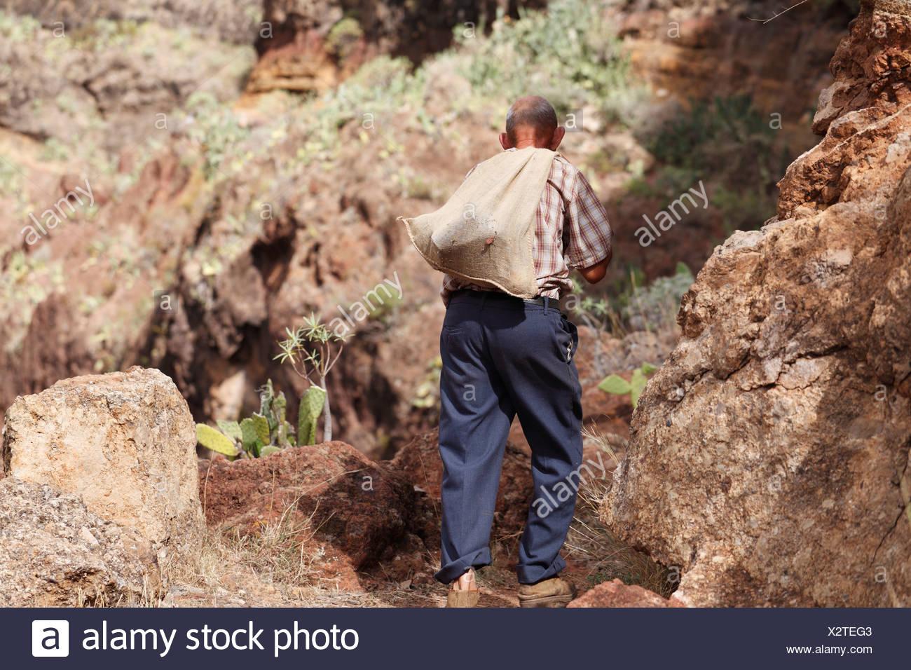 Local man carrying a sack on his back, Barranco de Guarimiar near Alajeró, La Gomera, Canary Islands, Spain, Europe - Stock Image